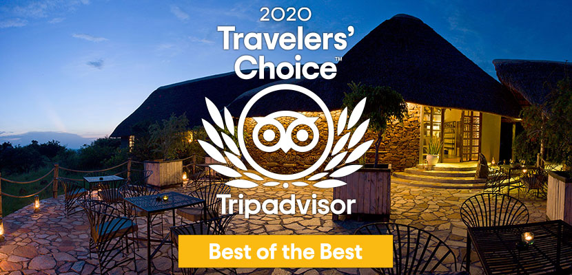 Grumeti Hills obtient le label Trip Advisor Traveller's Choice