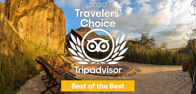 Olduvai Camp obtient le label Trip Advisor Traveller's Choice